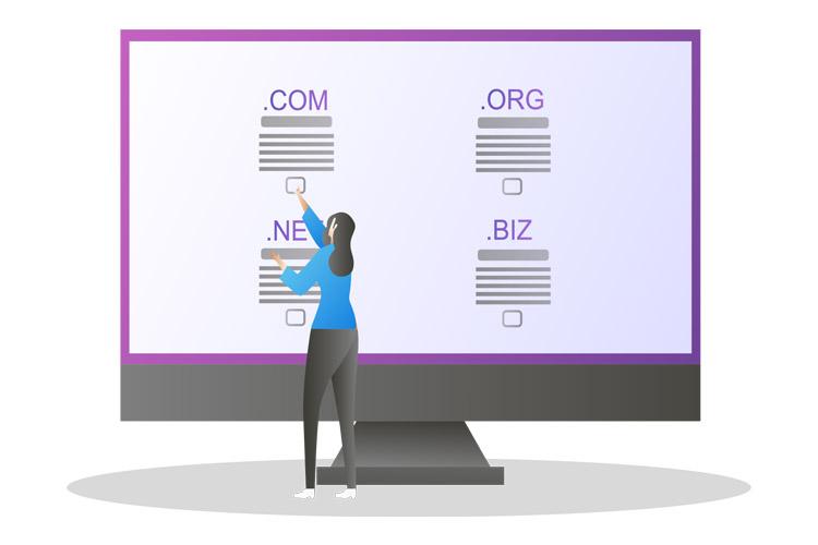 domain website seo